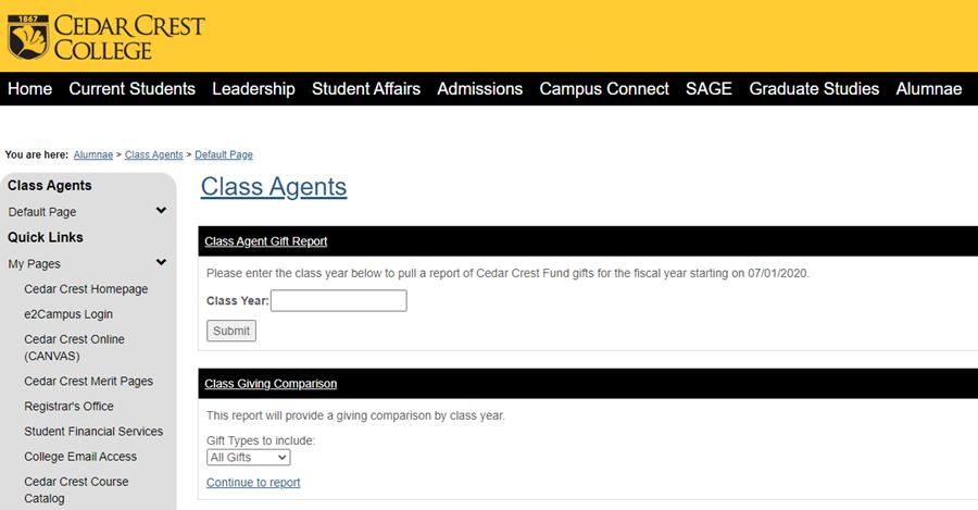 My CC Class Agent Report screenshot